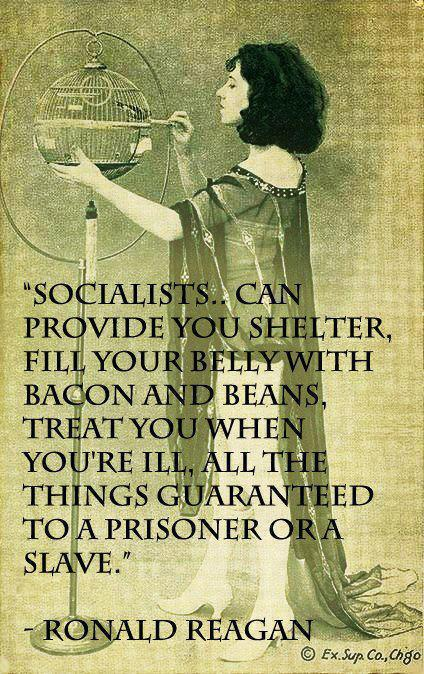 ron reagan on socialism