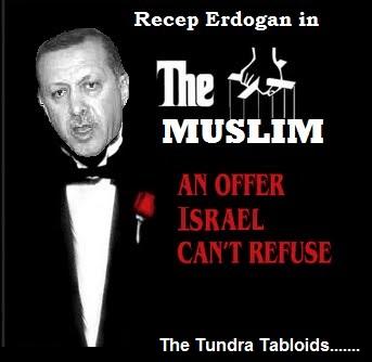 erdogan the peace maker