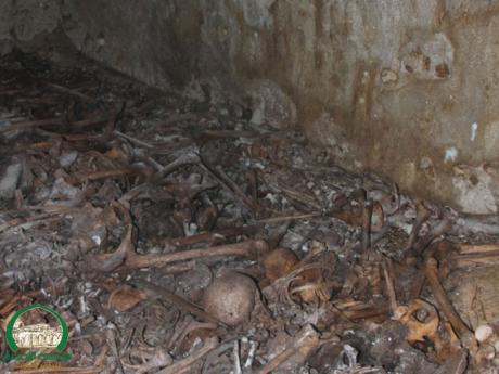 mass graves jaffa
