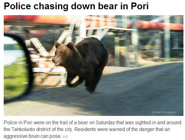 finnish police chase bear in center of town of Pori 9.6.2013