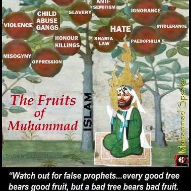 mohameds fruits