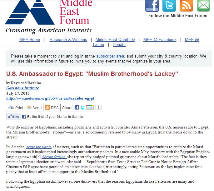 stooge of the muslim brotherhood, us ambassador to egypt 18.7.2013