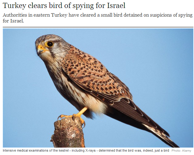 turkey clears bird of spying for israel 27.7.2013