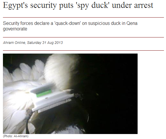 egypt arrests duck for spying 1.9.2013