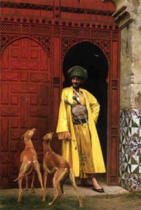 arab and dogs