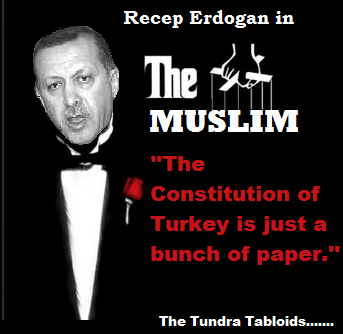 ERDOGAN TURK CONSTITUTION BUT PAPER