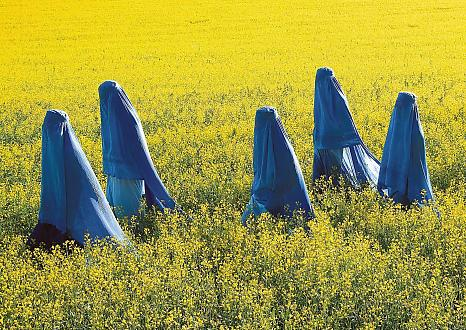 burka-babes-in-finland