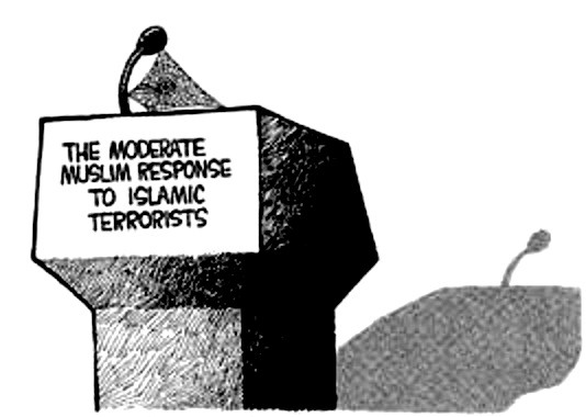 moderate-muslim-voice-non-existent