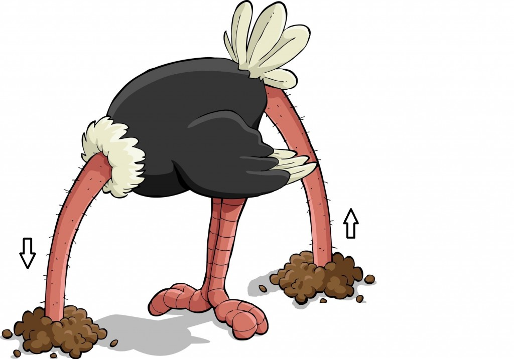 Ostrich-with-head-in-sand-and up its butt