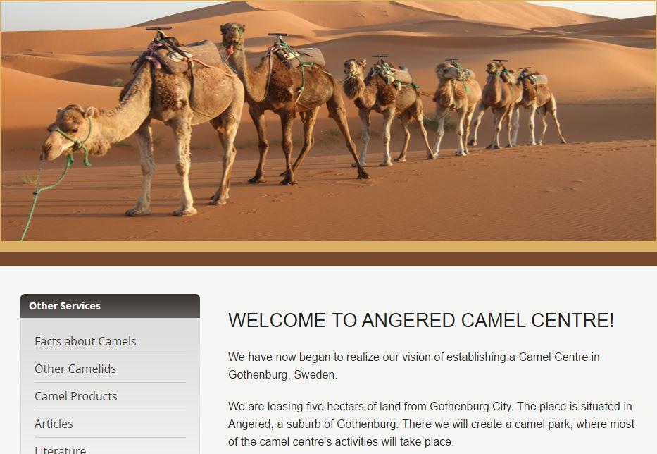 camel center for gothenberg